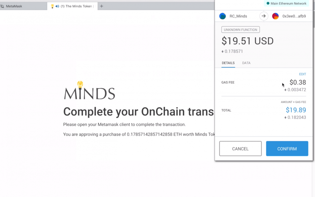Minds.com Token Purchase Summary